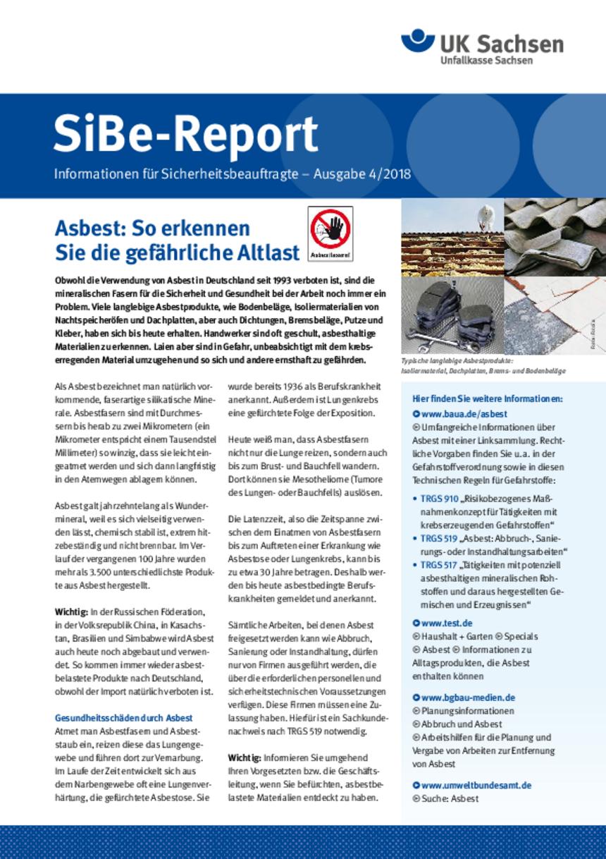 Titel vom SibeReport | Ausgabe 04/2018