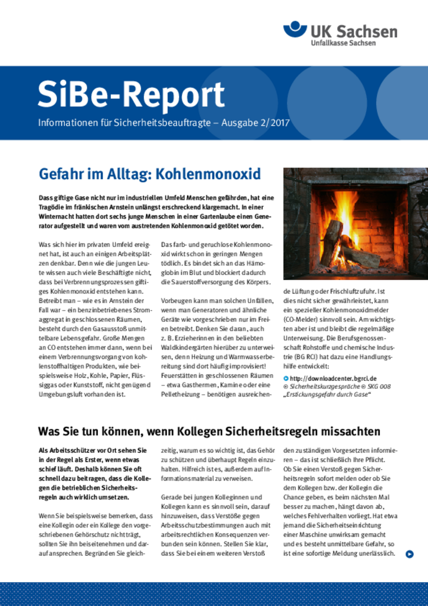 Titel vom SibeReport | Ausgabe 02/2017