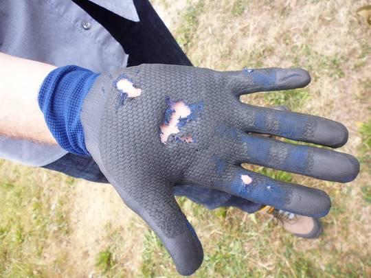 Absturzunfall im Rahmen eines Übungsdienstes: Durch die fehlende Bremswirkung des Sicherungsgerätes wurde der Handschuh beschädigt, die Hand verbrannt. Foto: Patzak