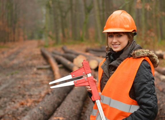 Forstmitarbeiterin bewertet Forsternte